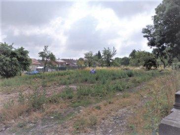 NOUS VENDONS à OTTONVILLE (Moselle),  A proximité immédiate de la ville de BOULAY-MOSELLE, de ses commerces et services, non loin également de l'accès à l'autoroute A4 (Metz-Strasbourg), et à moins d'une demi-heure de METZ ; Un terrain à bâtir d'une superficie de 5,95 ares, cadastré Section 1, parcelle 206. Ce terrain est viabilisé, il est plat et d'une largeur sur rue de 16 m environ. Situé au cœur du village, il est libre de construction.  CONTACT : Jean-Luc MEYER  Agent commercial Au : 07 60 13 78 96 Ou directement l'agence  Au : 03 87 36 12 24  Les frais d'agence sont inclus dans le prix annoncé.