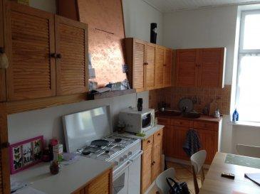 Appartement dans un petit immeuble de 3 lots avec syndic de copropriété bénévole. Situé au 1er étage, il est composé d'une entrée, une cuisine aménagée, un séjour, une chambre, une salle de bain avec douche et wc. Une cave et un grenier viennent compléter ce bien. Chauffage électrique, double vitrage en bois. DPE F  GES  D Pour tout renseignement: Daniel Marocchini 0633233303