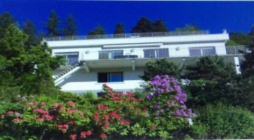 Périphérie de REMIREMONT/Axe Rmt-Luxeuil  Axe Remiremont - Luxeuil  Belle villa d\'architecte dans un cadre enchanteur et verdoyant environ 250 m² en parfait état.  Piscine chauffée. Garage. Terrain de 1ha25.  Très belle prestation.