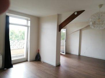Thionville, avenue de Gaulle: très bel appartement d'environ 84 m2 au 4ème étage d'un immeuble de caractère. Cuisine équipée, grand salon-séjour avec balcon (vue sur parc NAPOLÉON), 2 chambres, sdb/wc, cave. Excellent état
