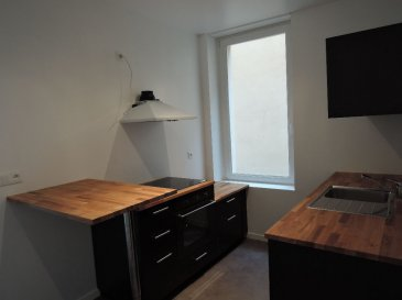 appartement RDC rénové. Agréable T2  au rez-de-chaussé dans un petit immeuble en centre ville. Il est composé  d\' une cuisine équipée, un salon, un  et une chambre  séparée. et d\'un  douche carrelée.