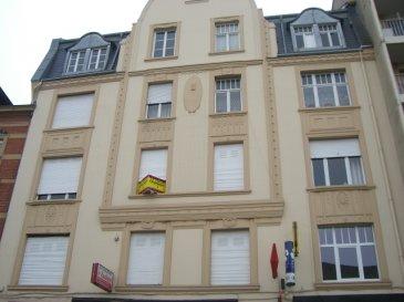 Quartier du Sablon à Metz, rue du XXème Corps Américain. Appartement deux pièces avec une chambre au premier étage. Cuisine séparée. Salle d'eau et toilettes séparées. Chauffage individuel au gaz. 50 m². Disponible à partir du 01/06/2019.
