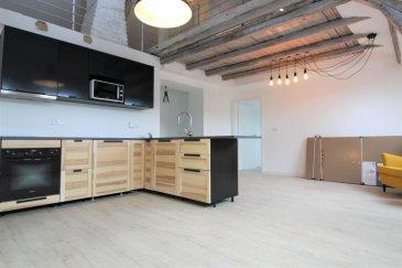 EFA Promo vous propose ce magnifique appartement avec combles aménageable de 120 m2 style loft en 3eme et dernier étage d\'une petite copropriété de 3 unités issue d\'une division d\'une grande maison.<br><br>L\'appartement bénéficie d\'une luminosité exceptionnelle avec vue sur la forêt. <br><br>1er niveau :<br><br>- Un hall d\'entrée<br><br>- Une cuisine équipée ouverte sur séjour <br><br>- Une grande chambre de 15 m2 <br><br>- Une chambre de 11 m2<br><br>- Une salle de douche avec meuble double vasque <br><br>2eme niveau :<br><br>- Un plateau de 40 m2 à aménager, possibilité de faire une grande chambre parentale.<br><br>Annexe : <br><br>- Une cave privative <br><br>- Une buanderie commune <br><br>- Un grand parking non privatif à proximité <br><br>Pour plus d\'informations ou programmer une visite veuillez contacter :<br><br>Quentin : 691 395 449<br>E-mail : quentin@efapromo.lu