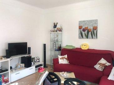 PROX'IMMO vous propose un appartement à louer de 50 m2 avec 1 chambre, cuisine équipée et séparée avec accès sur une belle terrasse de 26m2 , salle de douche en plein centre de Niederkorn. A proximité des transports en commun, des commerces, école.  Pour les visites merci de contacter Monsieur Lehssini 691 231 299