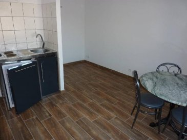 REMIREMONT  Studio en rez-de-chaussée  Séjour sur cuisine, salle de douche, lavabo,wc  Chauffage électrique au sol.    Loyer : 320 € 10 €    Caution : 320 €    FA locataire : 200 € - FA propriétaire : 200 €