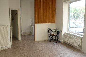 Quartier des Tanneurs, proximité immédiate du Centre Saint Jacques, dans une rue très calme.  Appartement F1 de 32m² qui se compose : d\'une entrée, coin cuisine équipée (plaques + frigo), pièce principale, salle de bains (baignoire) et WC.  Chauffage individuel au gaz.  Libre le 31 mai 2021.