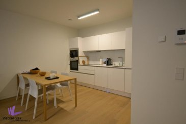 APPARTEMENT - Luxembourg