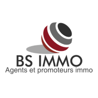 BS IMMO - real estate agency