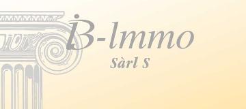 IB-Immo S.à.r.l. S
